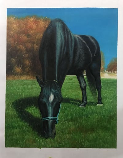 A painting of horse, mane, bridle, halter, horse like mammal, stallion, horse tack, fauna, snout, mare