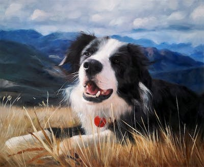 A painting of dog, dog breed, dog like mammal, dog breed group, sky, border collie, mountain, snout, grass, landseer