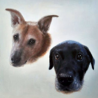 A painting of dog, dog breed, dog breed group, dog like mammal, snout, street dog, flooring, dog crossbreeds