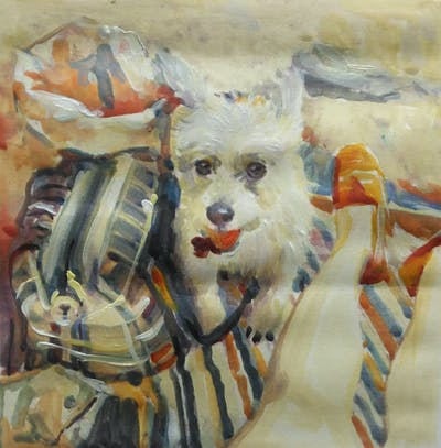 A painting of dog, dog breed, dog like mammal, maltese, snout, puppy, dog breed group, companion dog, morkie, carnivoran