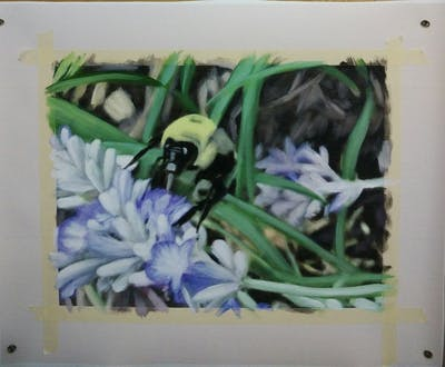 A painting of bee, membrane winged insect, flora, honey bee, flower, plant, pollinator, english lavender, insect, lavender