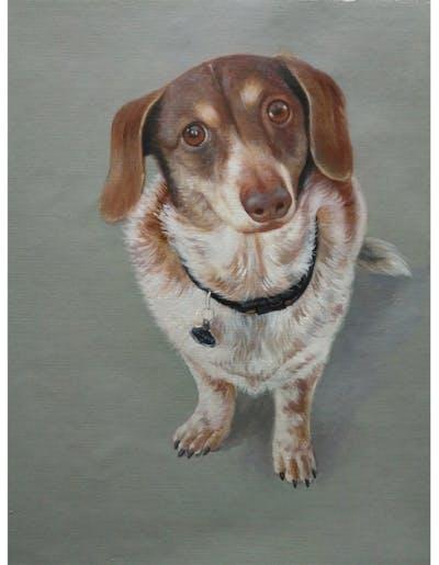 A painting of dog, dog breed, dog like mammal, snout, dog breed group, hunting dog, sporting group, carnivoran