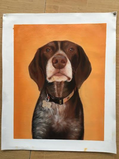 A painting of dog, dog breed, dog like mammal, snout, weimaraner, dog crossbreeds, labrador retriever, sporting group