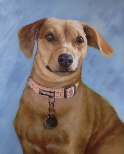 A painting of dog, dog like mammal, skin, dog breed, dog breed group, nose, carnivoran, snout, puppy, dog crossbreeds