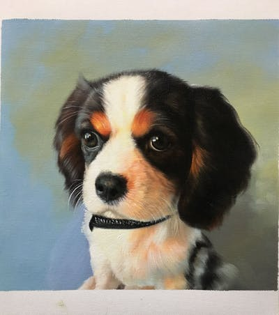 A painting of dog, dog like mammal, dog breed, king charles spaniel, vertebrate, cavalier king charles spaniel, spaniel, dog breed group, carnivoran, puppy