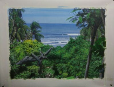 A painting of vegetation, tree, tropics, arecales, coast, sea, palm tree, plant, sky, water
