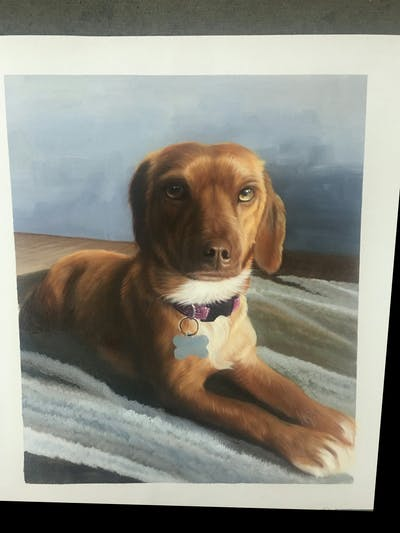 A painting of dog, dog breed, dog like mammal, dog breed group, snout, dog crossbreeds, companion dog, puppy, redbone coonhound, carnivoran