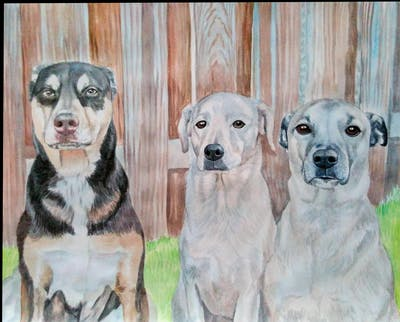 A painting of dog, dog breed, dog like mammal, dog breed group, snout, carnivoran, dog crossbreeds, sporting group