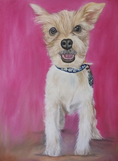 A painting of dog, dog breed, dog like mammal, dog breed group, puppy, snout, dog crossbreeds, companion dog, carnivoran, fur