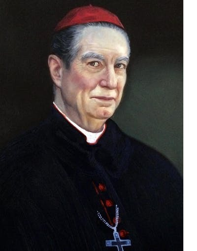 A painting of person, profession, official, cardinal, gentleman