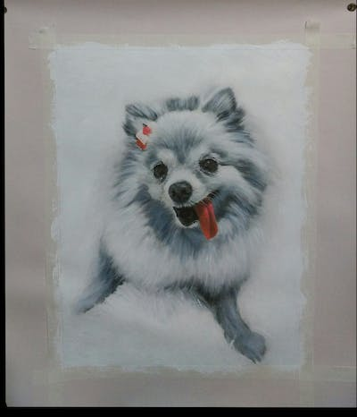 A painting of dog, dog like mammal, dog breed, pomeranian, black and white, dog breed group, german spitz klein, german spitz, volpino italiano, german spitz mittel