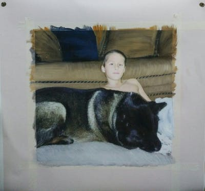 A painting of dog, mammal, dog breed, dog like mammal, dog breed group, snout, fur, dog crossbreeds