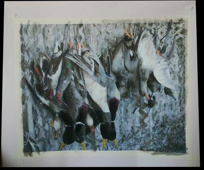A painting of water bird, ducks geese and swans, bird, duck, beak, waterfowl