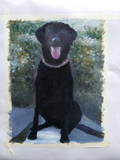 A painting of dog, dog like mammal, mammal, dog breed, labrador retriever, borador, retriever, snout, sporting group, dog breed group