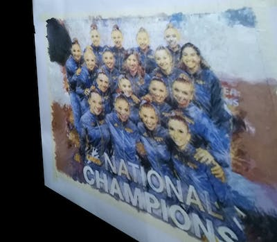 A painting of team, team sport, social group, sport venue, product, championship, competition event, player, competition