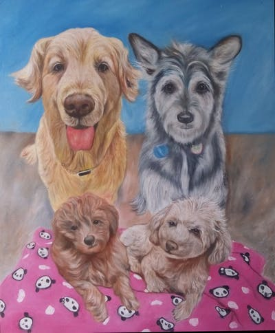 A painting of dog like mammal, dog breed, miniature poodle, dog, dog breed group, poodle, toy poodle, poodle crossbreed, goldendoodle, schnoodle