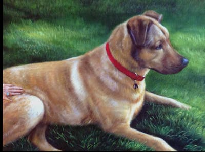 A painting of dog, dog breed, dog breed group, dog like mammal, snout, grass, dog crossbreeds