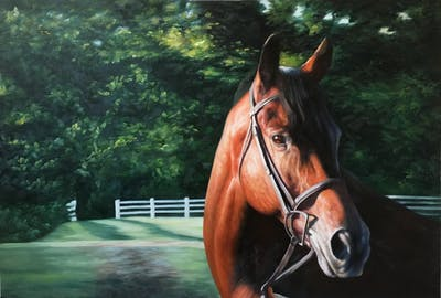 A painting of horse, bridle, halter, rein, horse tack, horse harness, mane, horse like mammal, stallion, mare