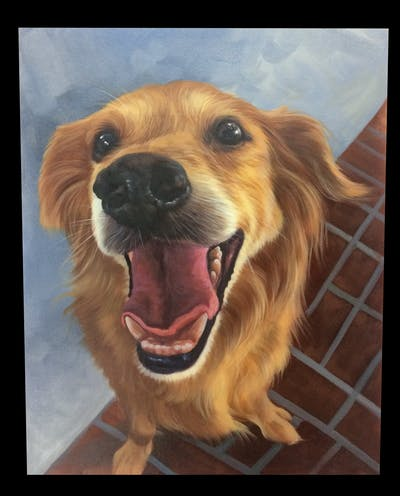 A painting of dog, dog breed, dog breed group, nose, dog like mammal, golden retriever, snout, retriever, whiskers, companion dog