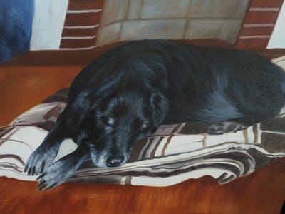A painting of dog, black, dog like mammal, dog breed group, dog breed, borador, floor, flooring, labrador retriever, dog crossbreeds