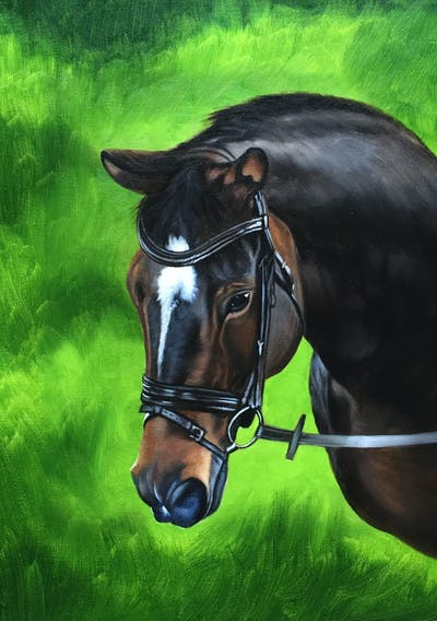 A painting of horse, bridle, horse tack, rein, halter, horse harness, horse like mammal, stallion, mane, horse supplies