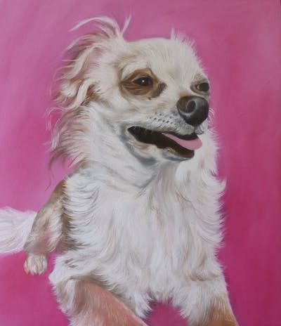 A painting of dog, dog breed, dog breed group, dog like mammal, snout, companion dog, tibetan spaniel, carnivoran, papillon, dog crossbreeds