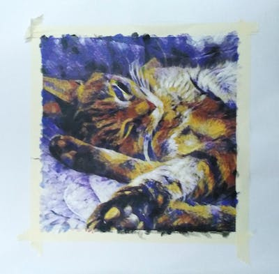 A painting of cat, mammal, small to medium sized cats, dragon li, cat like mammal, whiskers, tabby cat, fauna, fur, pixie bob