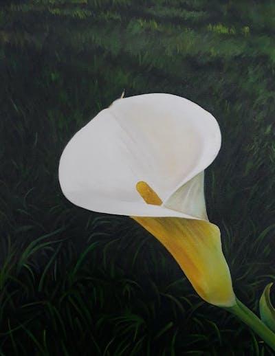 A painting of flower, plant, flora, arum, wildflower, alismatales, spring, grass, petal, calas