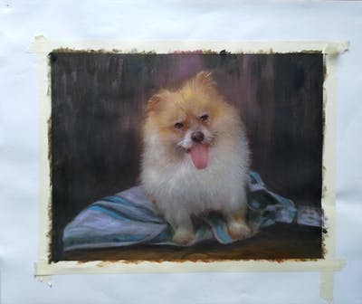 A painting of dog, dog like mammal, pomeranian, dog breed, german spitz klein, mammal, german spitz, dog breed group, volpino italiano, german spitz mittel