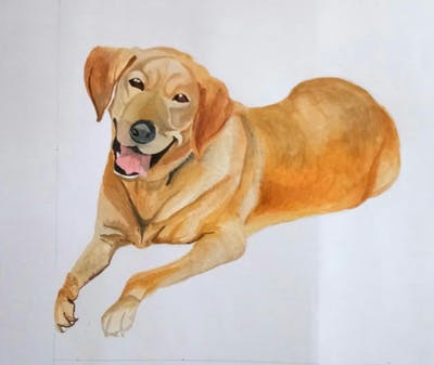 A painting of dog, dog like mammal, dog breed, dog breed group, labrador retriever, retriever, golden retriever, snout, puppy, carnivoran