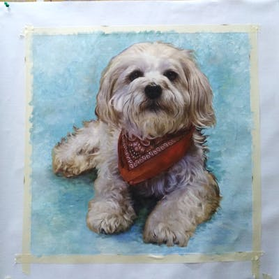 A painting of dog, dog breed, dog like mammal, havanese, snout, dog crossbreeds, morkie, cavachon, schnoodle, lhasa apso