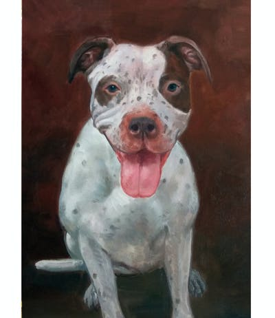 A painting of dog breed, dog, dog like mammal, american pit bull terrier, snout, pit bull, carnivoran, dog breed group, non sporting group, dog crossbreeds