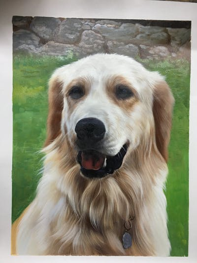 A painting of dog, golden retriever, dog breed, retriever, dog like mammal, snout, dog breed group, sporting group, whiskers, labrador retriever