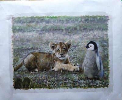 A painting of bird, penguin, flightless bird, fauna, beak, wildlife