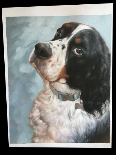 A painting of dog, dog breed, dog like mammal, spaniel, dog breed group, english springer spaniel, snout, russian spaniel, dog crossbreeds, english cocker spaniel