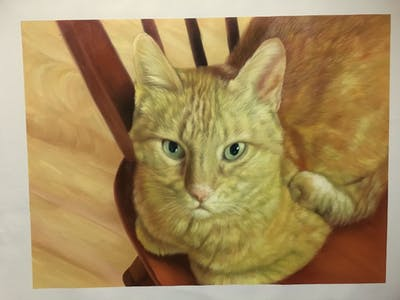 A painting of cat, whiskers, small to medium sized cats, cat like mammal, tabby cat, fauna, domestic short haired cat, european shorthair, kitten, snout