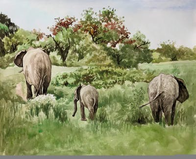 A painting of elephant, elephants and mammoths, wildlife, terrestrial animal, grassland, nature reserve, fauna, tusk, safari, grass
