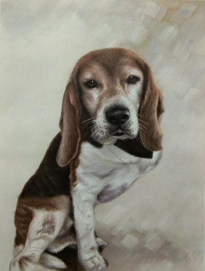 A painting of dog breed, dog, dog like mammal, beagle, snout, treeing walker coonhound, dog breed group, hound, english foxhound, dog crossbreeds