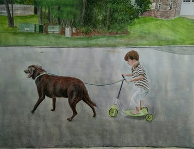 A painting of dog, dog like mammal, dog breed, dog walking, grass, play, obedience training, leash, lawn, sporting group