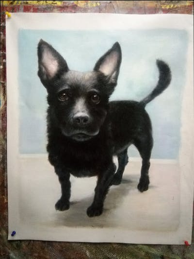 A painting of dog, dog like mammal, dog breed, dog breed group, snout, vulnerable native breeds, carnivoran, patterdale terrier, rare breed dog, dog crossbreeds