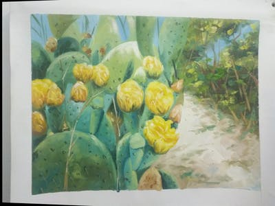 A painting of plant, flowering plant, eastern prickly pear, cactus, prickly pear, vegetation, barbary fig, thorns spines and prickles, spring, wildflower