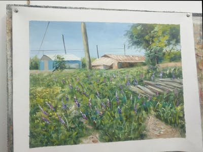 A painting of flower, plant, ecosystem, wildflower, flora, english lavender, flowering plant, lupin, shrubland, grass family
