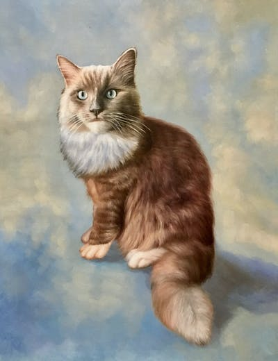 A painting of cat, whiskers, facial expression, small to medium sized cats, yawn, cat like mammal, nose, fur, emotion, fauna