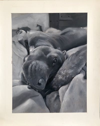 A painting of dog, mammal, dog like mammal, dog breed, snout, american pit bull terrier, carnivoran, pit bull, dog breed group, puppy