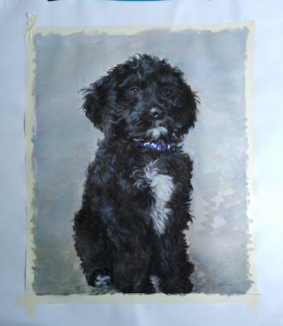 A painting of dog like mammal, dog, dog breed, spanish water dog, vertebrate, schnoodle, dog crossbreeds, miniature poodle, poodle crossbreed, puppy
